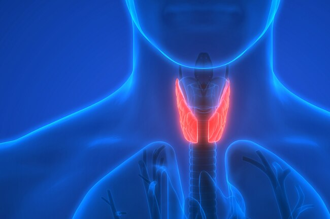 Specialist ENT HOARSENESS OF VOICE
